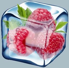 chlodnictwo-malina